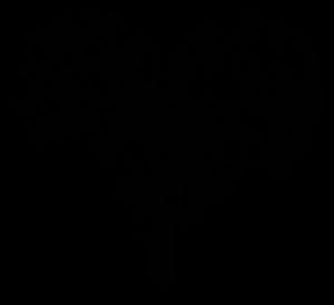 Pomoc dla Frankowiczów. Pozew frankowy o unieważnienie. Frankowicze Toruń kancelaria. Kancelaria dla frankowiczów Bydgoszcz